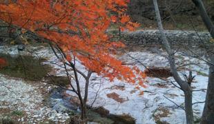 كوريا : ألوان الخريف البديعة