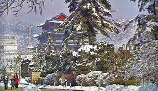حكايات شهرزاد كوريا: أسطورة ميلاد