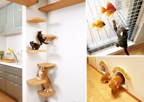 بيت ياباني لمحبي القطط