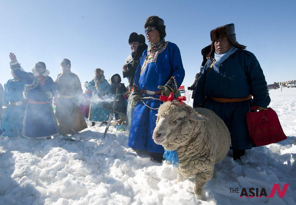 المغول يحتفلون بالخراف في عيد الماشية